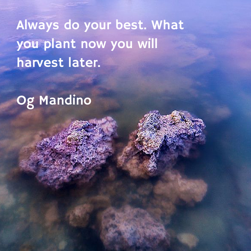 Always do your best. What you plant now
