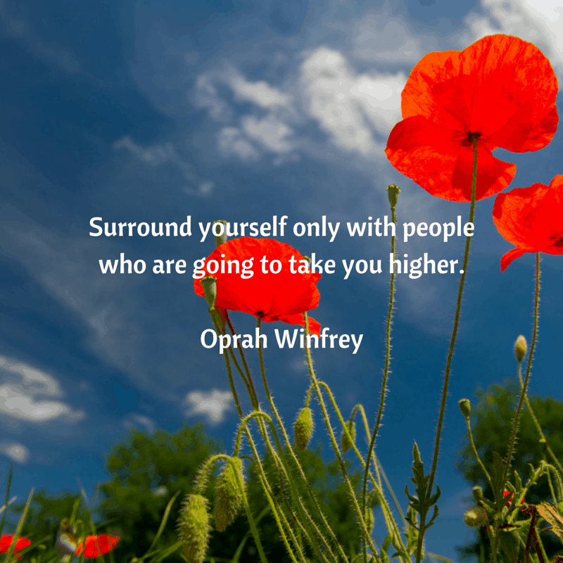 Surround yourself only with people who (1)