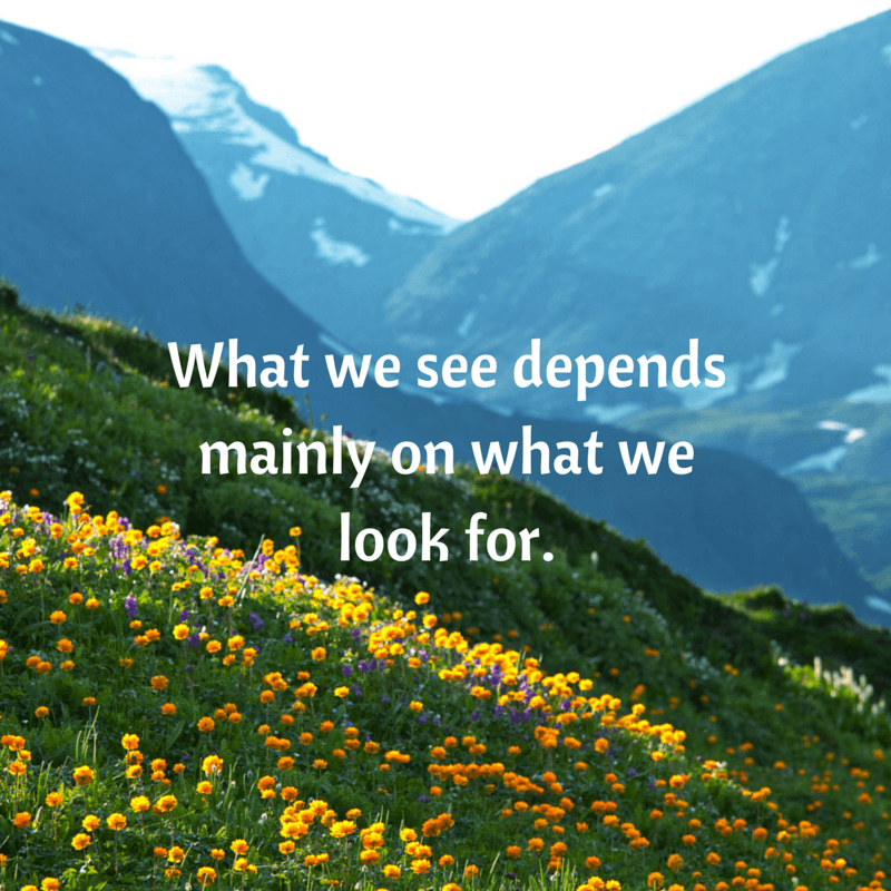What we see depends mainly on what we