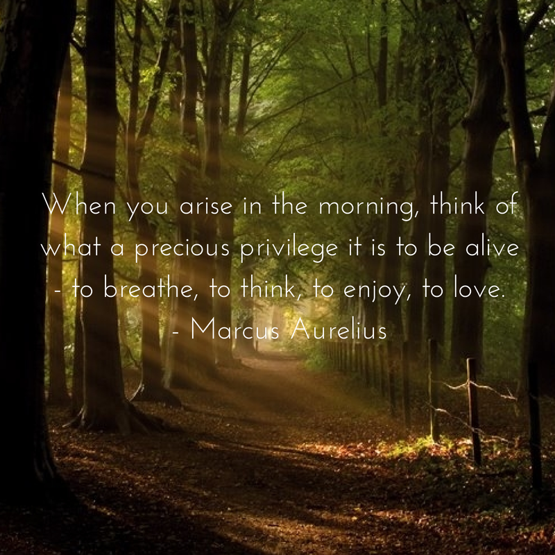 When you arise in the morning, think of